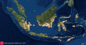 satellite indonesie incendies forets 2015